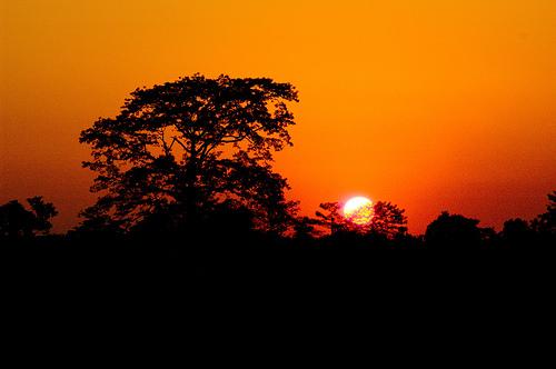 sunset assam